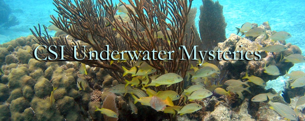 CSI Underwater Mysteries